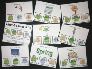 Season and Holiday Visual Task Cards (Special Ed)