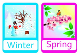 Season flashcards