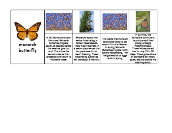 Seasonal Behaviors and Adaptations Sequence Cards