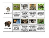 Seasonal Behaviors and Adaptations Sequence Cards