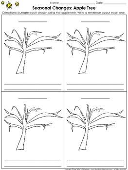 Seasonal Changes: Apple Tree Activity #2 - Faceless Tree - King Virtue