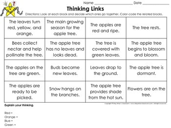 Seasonal Changes: Apple Tree - Summer Fall Winter Spring Thinking Links Activity