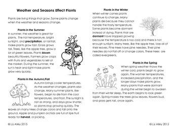 Weather and Seasonal Change Effects Plants