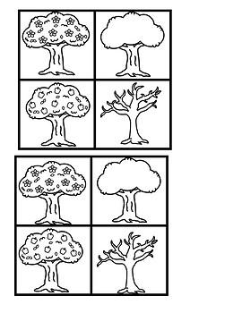 Seasonal Changes of the Apple Tree