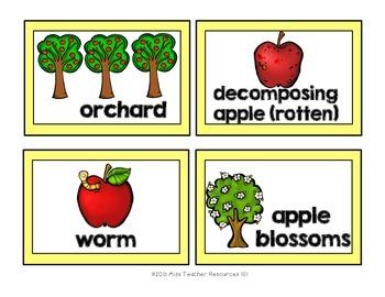 Seasonal Word Cards {Fall Winter Spring Summer Bundle}