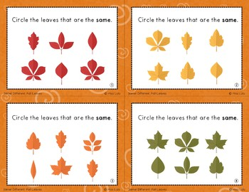 Seasonal Same & Different Task Card Bundle