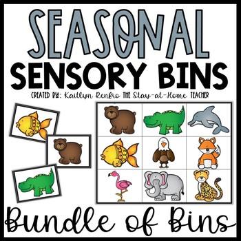 Sensory Bin Puzzles and Matching YEAR LONG Bundle
