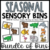 Sensory Bin Puzzles and Matching YEAR LONG Bundle