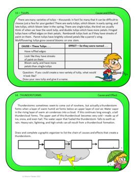 Seasons Task Card Package
