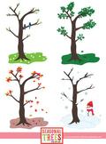 Seasonal Trees for the 4 Seasons Clip Art Set