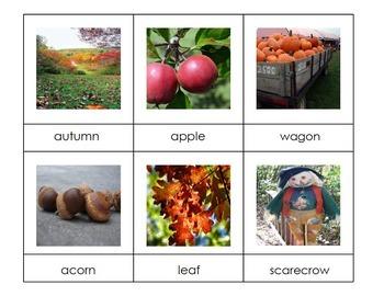 Seasons 3-Part Montessori / Vocabulary Cards BUNDLE