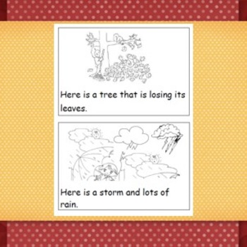 Comprehension book and activities- Seasons