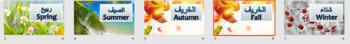 Seasons Flashcards Arabic and English