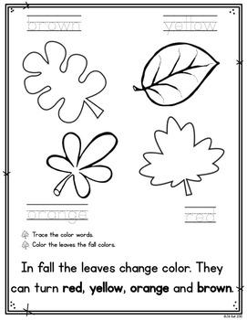 Seasons: Interactive Booklets Bundle