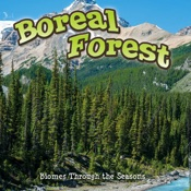 Seasons Of The Boreal Forest Biome