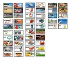 Seasons Picture Vocabulary Word Wall Cards Fall, Spring, Summer Winter TC