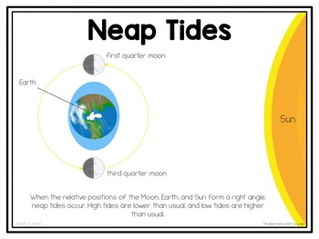 Tides Posters and Interactive Notebook INB Set