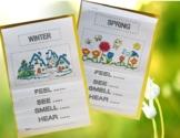 Seasons & Senses Flip Books - Informational text