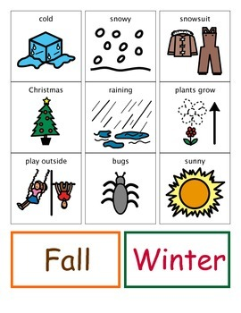 Seasons Sort with visuals and student activity