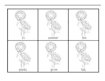 Seasons Unscramble Sentence Activity