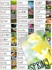 Seasons Vocabulary Resources Bundle (Fall, Winter, Spring, Summer)