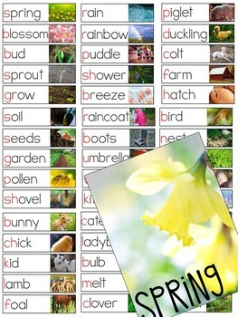 Seasons Vocabulary Resources Collection (Fall, Winter, Spring, Summer)