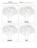 Seasons and Trees Activity
