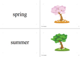 Seasons and Weather Vocabulary Cards