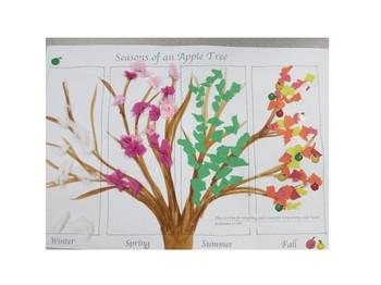 Seasons of an Apple Tree Art Lesson