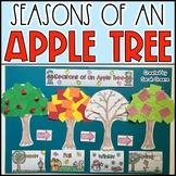 Seasons of an Apple Tree Craft!