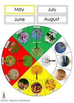 Seasons of the Year Cycle Circle Cards for Southern Hemisphere