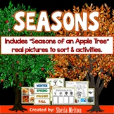 Seasons - Winter, Spring, Summer, Fall - Seasons of an Apple Tree