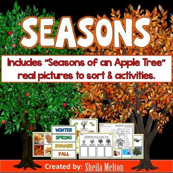 Seasons - Winter, Spring, Summer, Fall - Seasons of an Apple Tree