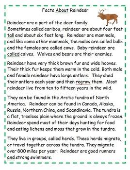 December Reindeer Themed Activities