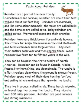 Reindeer Themed Activities