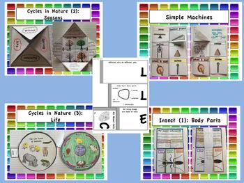 Second Grade Interactive Notebook BUNDLE: Core Knowledge