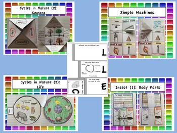 Second Grade Interactive Notebook BUNDLE: Core Knowledge Foldables