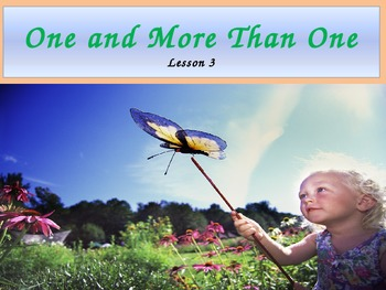 "Second Grade ""One and More Than One"" Noun Power Point"