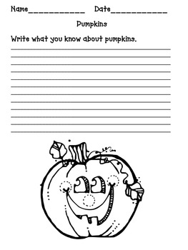 Second Grade Science  Pumpkin Investigation