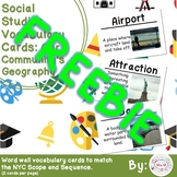 FREEBIE 2nd Grade Social Studies Vocabulary Cards: Our Com