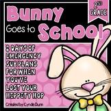 Second Grade Sub Plans Bunny