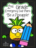 Second Grade Sub Plans (Pineapple Day)