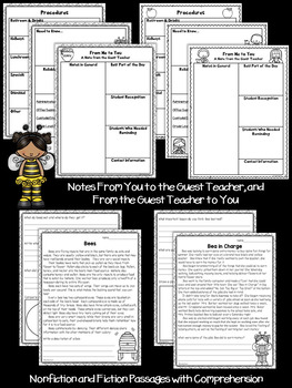 Second Grade Sub Plans for Anytime Bee Themed
