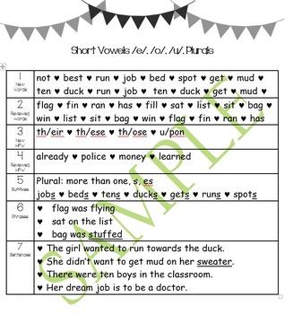 Second Grade Toughie Chart Phonics and Grammar - 1 Short Vowels a and i, Plurals