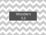 Second Grade Wonders Unit 2 Week 3 Spelling Words