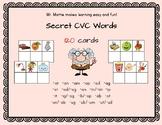 Secret CVC Words 120 cards 27 word families