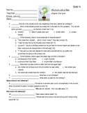 Secret Life of Bees Chapter Reading Quizzes