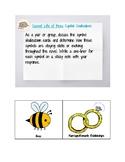Secret Life of Bees Symbol Shakedown!