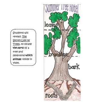 Secret Life of Trees Activities and Printables for Harcourt Trophies