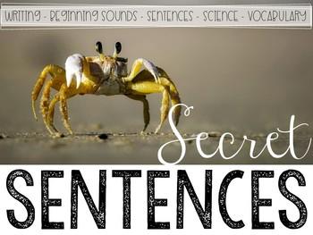 Secret Sentences: Ocean Edition